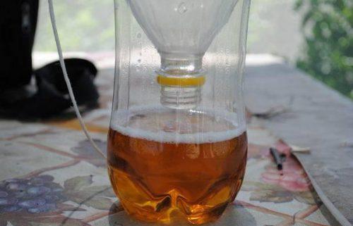 Ловушка для мух из пластиковой бутылки